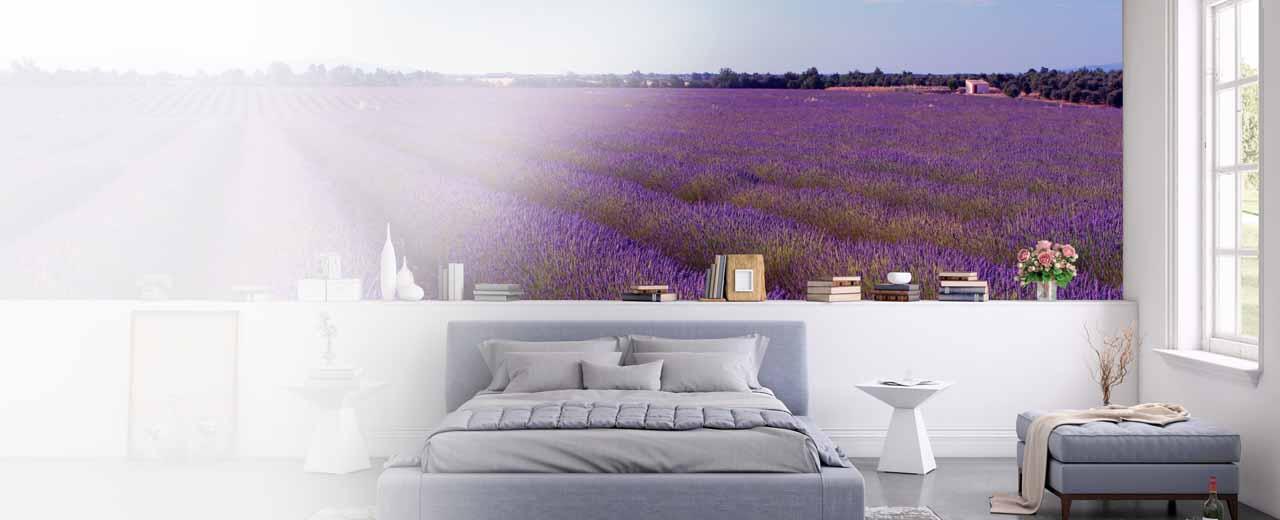 Fototapete Provence
