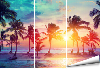 Fototapete Palmen und Strand